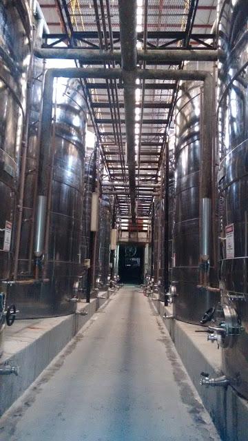 9 motivos para visitar Bento Gonçalves vinicola