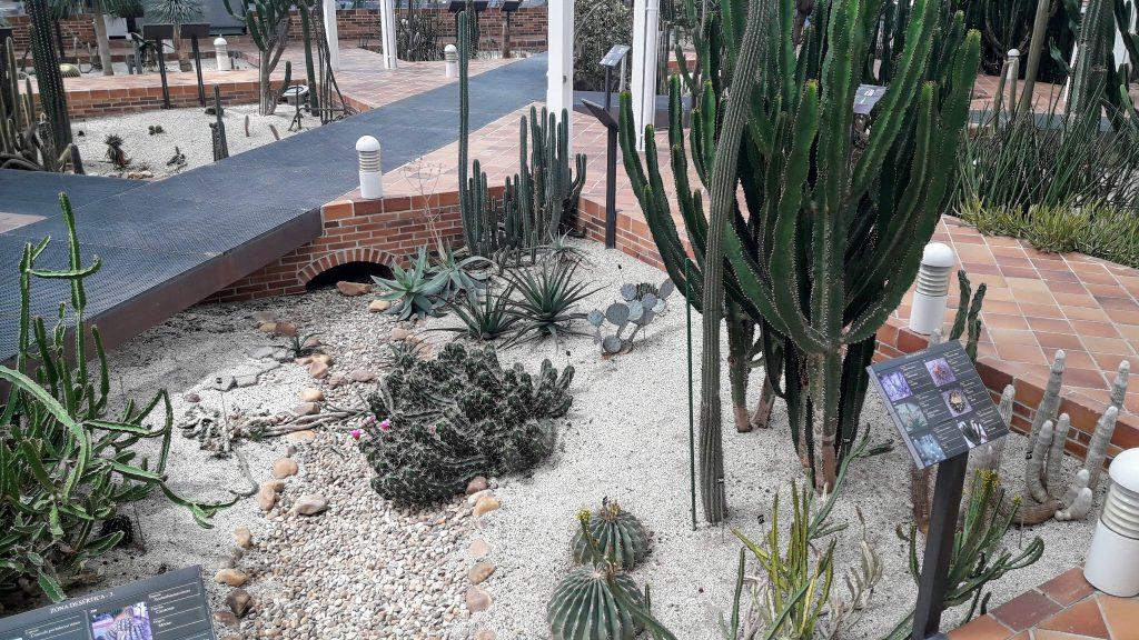 palacio de cristal de arganzuela deserto