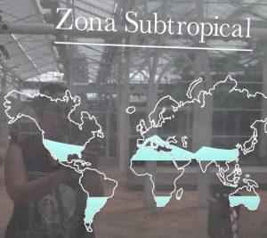 palacio de cristal de arganzuela placa subtropical
