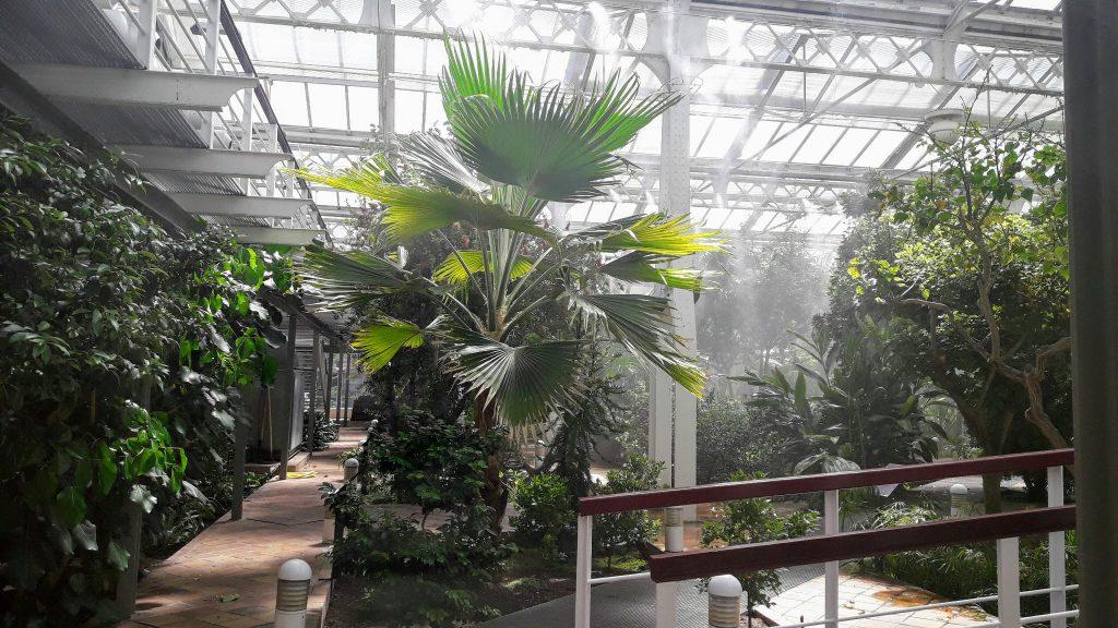 palacio de cristal de arganzuela tropical