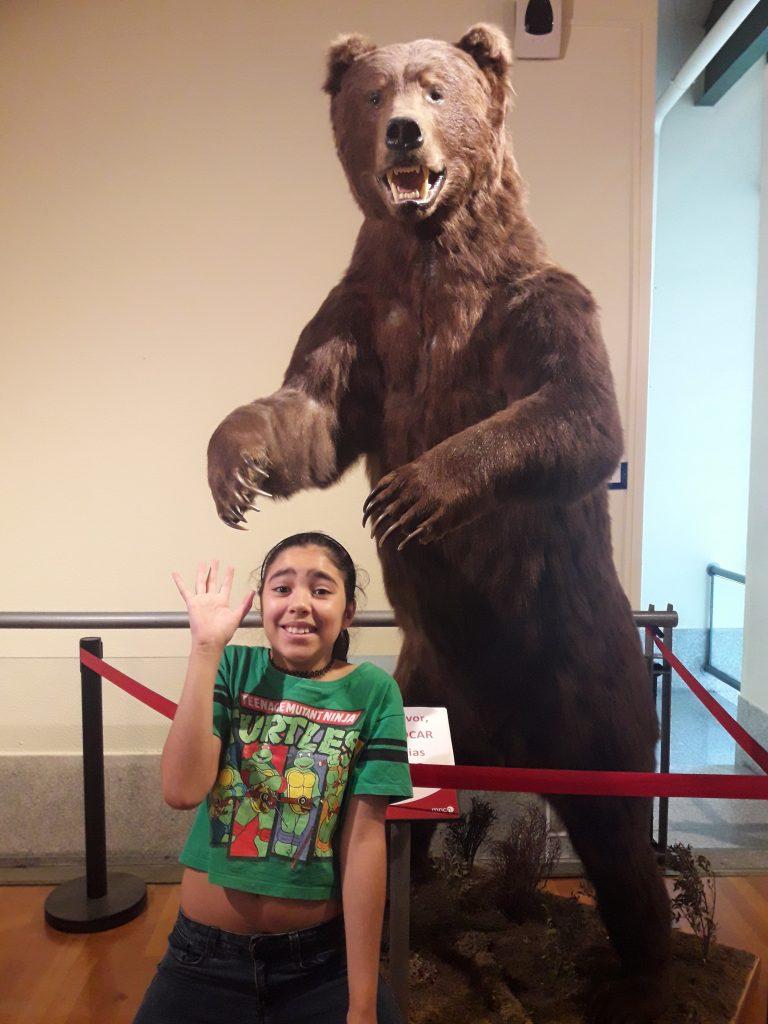 museu ciencias naturais madrid urso