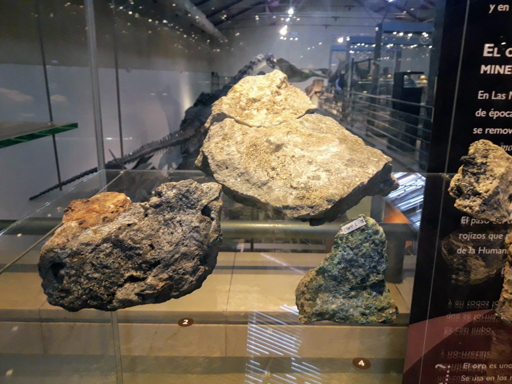 museu nacional de ciencias naturais